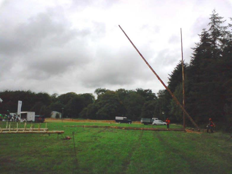 timber-r48