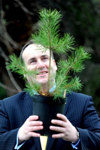 Paul Wheelhouse MSP Scots Pine Small