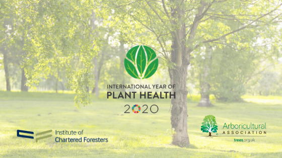 Tree Health Day (POSTPONED)