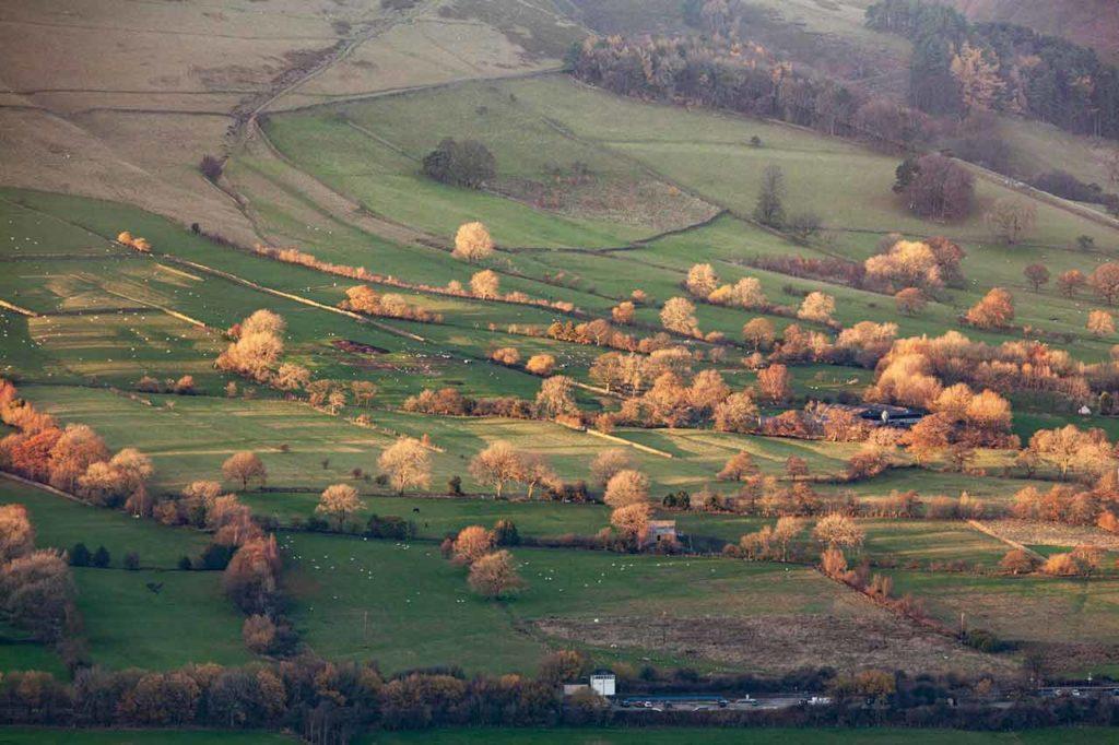 Farm-UK